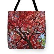 Red Leaves On Tree Tote Bag