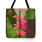 Red Leaves2 Tote Bag