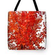 Red Lights Tote Bag