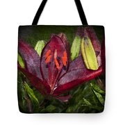Red Lily 5 Tote Bag