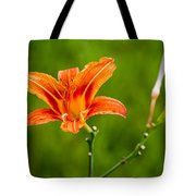Red Lily - Featured 3 Tote Bag