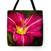 Red Magic Daylily Tote Bag