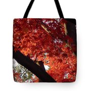 Red Maple 02 Tote Bag
