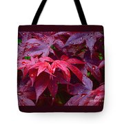 Red Maple After Rain Tote Bag