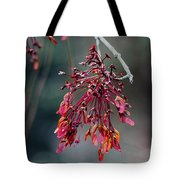 Red Maple Flowers Tote Bag