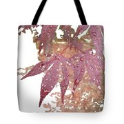 Red Maple Kissed By Water Tote Bag