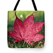 Red Maple Leaf And Dew Tote Bag