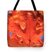 Peak Color Maple Leaves Tote Bag