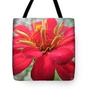 Red Mini-zinnia Tote Bag