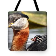 Red-necked Grebe And Chick Tote Bag
