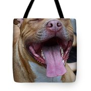 Red Nose Pit Bull Terrier Tote Bag