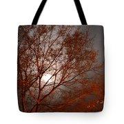 Red Oak At Sunrise Tote Bag