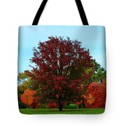 Red Oak In Loose Park Tote Bag