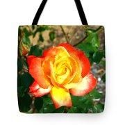 Red Orange And Yellow Rose Tote Bag