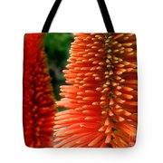 Red-orange Flower Of Eremurus Ruiter-hybride Tote Bag