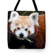 Red Panda  Ailurus Fulgens Eating Tote Bag