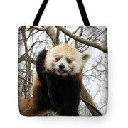 Red Panda Bear In A Tree Tote Bag