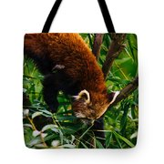 Red Panda Tree Climb Tote Bag
