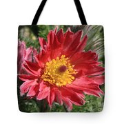 Red Pasque Flower Tote Bag