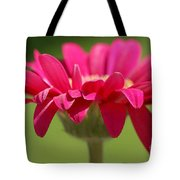 Red Pink Daisy Tote Bag