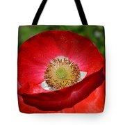 Red Poppy 3 Tote Bag