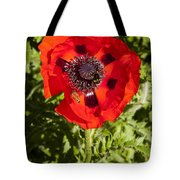 Red Poppy And Bee Tote Bag