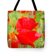 Red Poppy Flowers Art Prints Floral Tote Bag