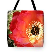 Red Prickly Pear Blossom Tote Bag