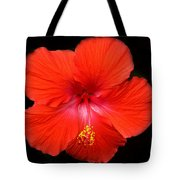 Red Red Tote Bag