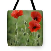 Red Red Poppies 1 Tote Bag
