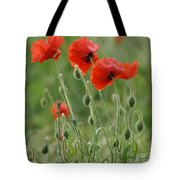 Red Red Poppies 2 Tote Bag