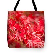 Red Red Red Tote Bag by Anne Gilbert