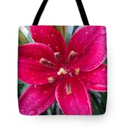 Red Refreshed Lily Tote Bag