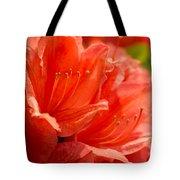 Red Rhodo Tote Bag