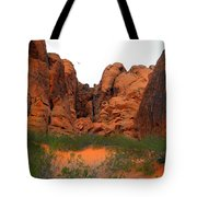 Red Rock Canyon. Tote Bag