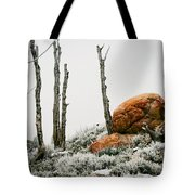Red Rock Frost - Green Mountain - Wyoming Tote Bag