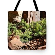 Red Rock Reflection Tote Bag