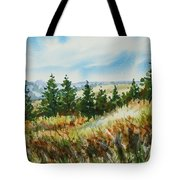 Red Rock View Road Tote Bag