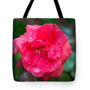 Savannah Ga Red Rose After A Rain Tote Bag