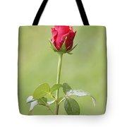 Red Rose Bud 1 Tote Bag