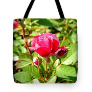 Pink Rose Buds Tote Bag