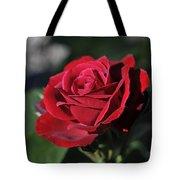 Red Rose Dark Tote Bag by Roger Snyder
