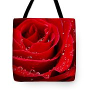 Red Rose Tote Bag by Elena Elisseeva
