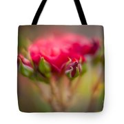 Red Rose Flourish Tote Bag
