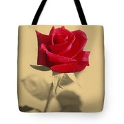 Red Rose Flower Isolated On Sepia Background Tote Bag
