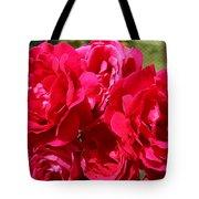 Red Rose Garden Art Prints Roses Tote Bag