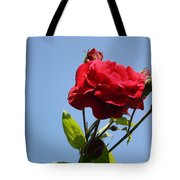 Red Roses With Blue Sky Background Tote Bag