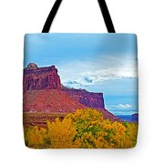 Red Sandstone Formations Going Into Needles District Of Canyonlands National Park-utah Tote Bag