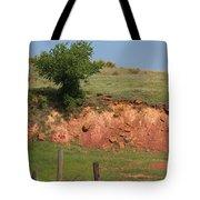 Red Sandstone Hillside With Grass Tote Bag by Robert D  Brozek