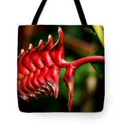 Red Scales Tote Bag